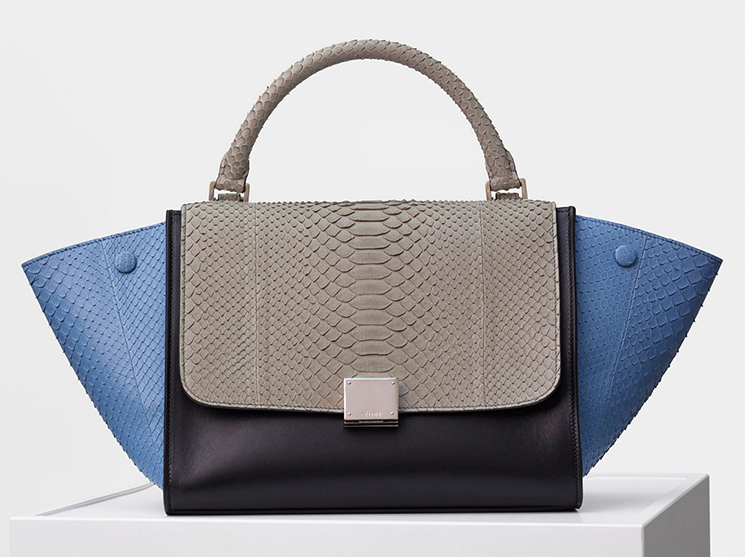 Celine-Winter-2016-Bag-Collection-39
